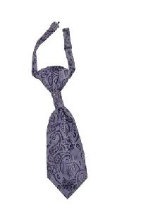 Polyester Paisley Woven Pre-tied Ascot(Cravat) Purple