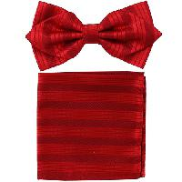 Polyester Pointed Tip Woven Bowtie with Hanky PW10093A