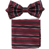 Polyester Pointed Tip Woven Bowtie with Hanky PW10096A