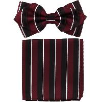 Polyester Pointed Tip Woven Bowtie with Hanky PW10097A