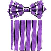 Polyester Pointed Tip Woven Bowtie with Hanky PW10156A