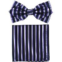 Polyester Pointed Tip Woven Bowtie with Hanky PW10160A