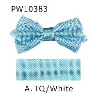 Polyester Pointed Tip Woven Bowtie with Hanky PW10383