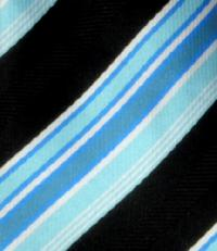 Polyester Boy's Zipper Neck Tie (14