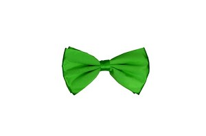 Silk Satin Bowties Bright Green